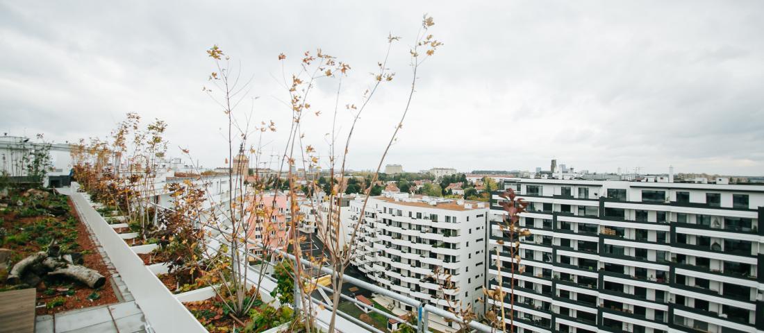 Blick von der Dachterrasse Wien Süd_Credit: Fotografie Fetz/IBA